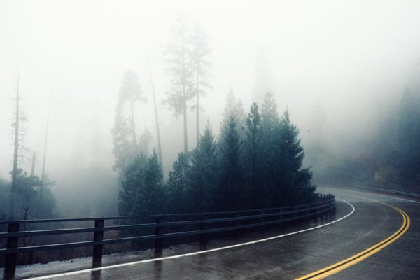 How Weather Conditions Affect Mobile Signal - Wet winding road in the woods on a foggy day