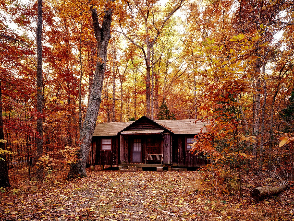 Cell Phone Booster for Remote Areas - Cabin in woods beautiful autumn leaves